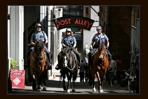 Members of the Seattle Mounted Troop