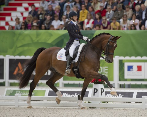 Laura and Verdades competing in the 2014 World Equestrian Games in Normandy, France. Photo by Allen MacMillan
