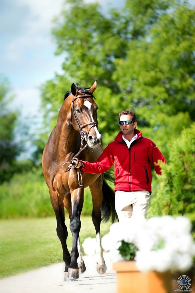 Derek and the Grand Prix stallion Cujo at an FEI jog inspection. (Photo by Angelstone Tournaments)