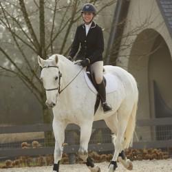 FOAL Equestrian