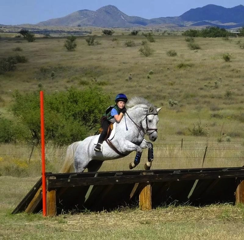 Like mother, like daughter: 11-year-old Jordan Crabo competes on her new Connemara pony, Eclipse. (Photo courtesy of Barb Crabo)