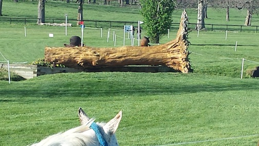 "Fence 20, which was a 3'6"" fallen tree, seemed imposing, yet on Saturday the horses jumped it like a cross rail. (Photo courtesy of Rolex)"