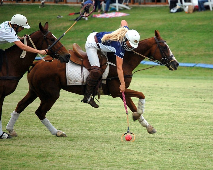 Sidelines Magazine Polocrosse King Of The One Horse Sports