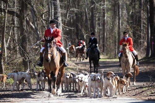 Sue and Martyn at the Lowcountry Hunt in Jacksonboro, South Carolina.