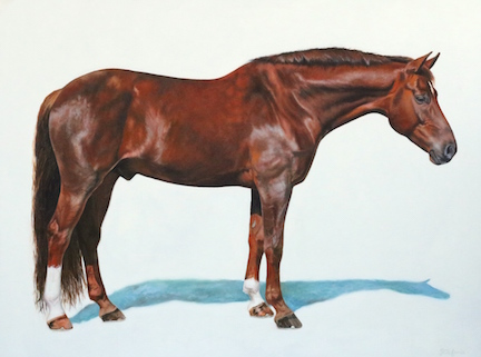 "Commission of Samba, shown as Simply Cool — Oil on Belgian Linen, 36""x48"""