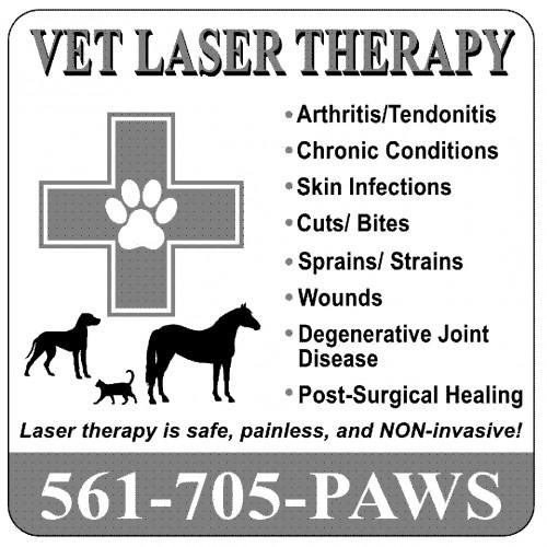 VetLaserTherapy(3)