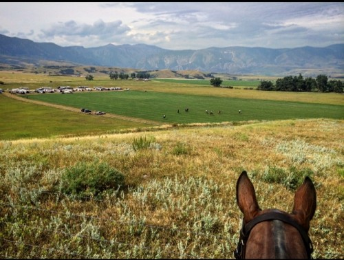 Kerstie's view of the polo fields, which line the foothills of the Big Horn National Park.
