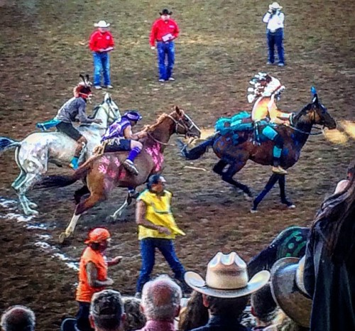 Never a dull moment during the Indian Relay Races at the Sheridan Rodeo.