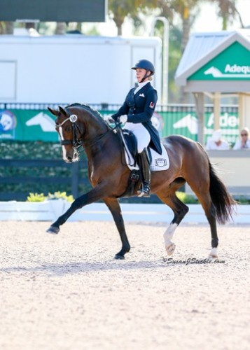 Caravella, by Contango, and Megan Lane represented Canada at the World Equestrian Games and finished in the Top 10 at Aachen in 2014.  Photo by Susan J. Stickle