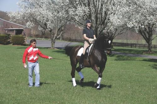 Gene working with his Grand Prix horse under German Dressage trainer Felicitas von Neuman-Cosel. Photo by Natalia Kostikova