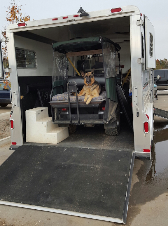 Tommy's dog, Tuf, takes his customary position in the golf cart — before it's even unloaded.