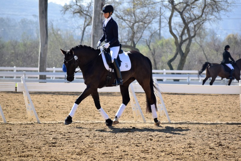 Shannon and Disco Inferno, an 8-year-old by Westpoint owned by Shannon and Steffen Photo courtesy of Shannon Peters