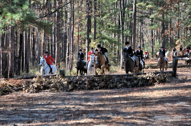 Hunting in the Hitchcock Woods Photo courtesy of VisitAiken, SC