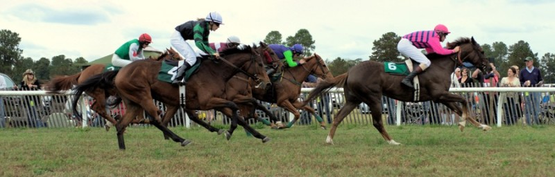 Aiken steeplechases Photo courtesy of VisitAiken, SC