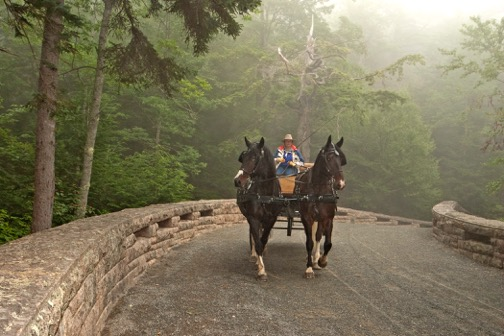 A beautiful ride on Acadia's carriage roads. Photo by Ulrike Welsch