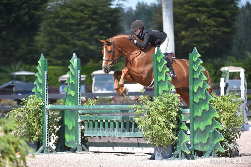 "Becky and Touchdown in the 3'3"" AO hunters at WEF Photo by The Book LLC"