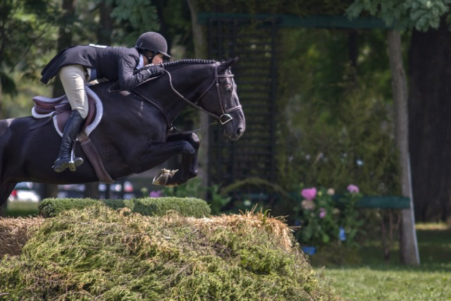 Carl Weeden and Poetry in the USHJA National Hunter Derby. The 2015 Chicago Hunter Derby took place at Carl and Rush Weeden's Annali-Brookwood Farm.  Photo by Aullmyn Photography