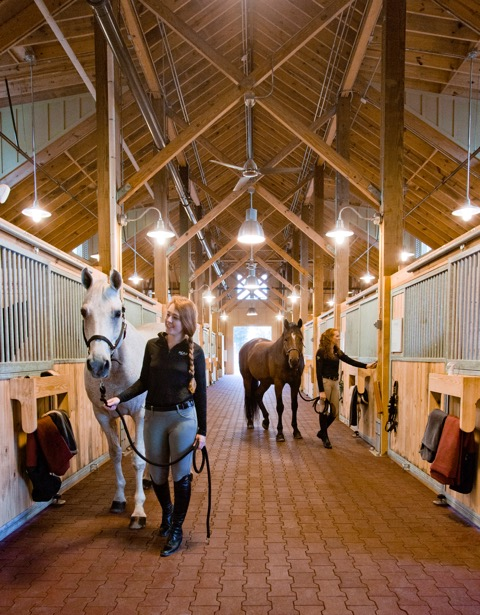 The facility is home to 65 SCAD-owned horses.