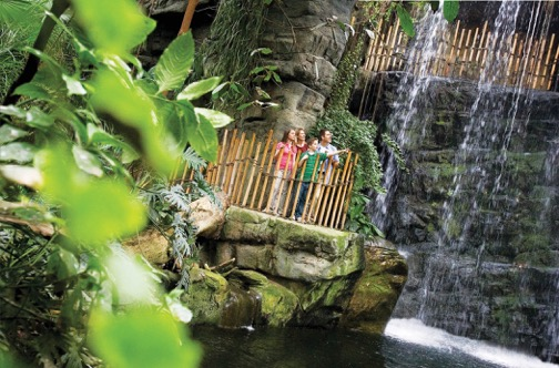 Visit the rainforest at Omaha's Henry Doorly Zoo and Aquarium.