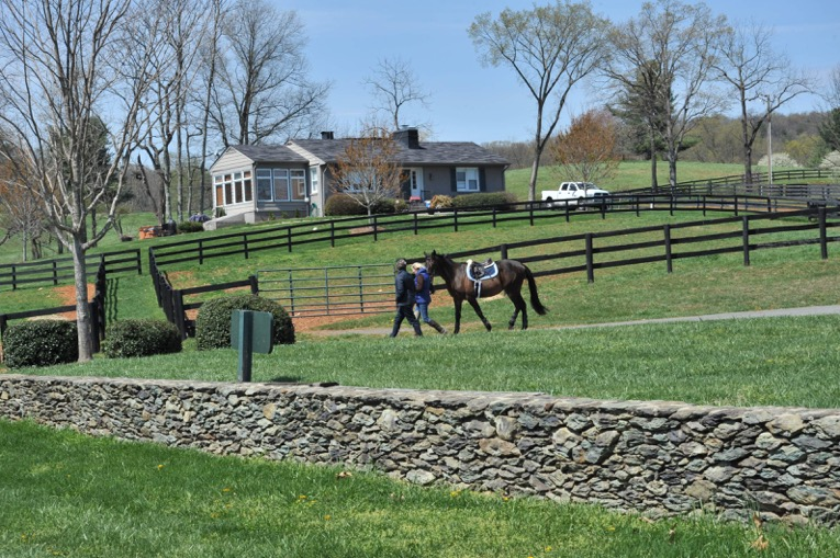 Riders lead a horse past head trainer Skyeler Voss' house.