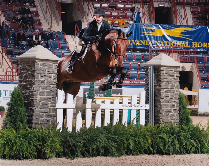 Catherine Apostol: A Priceless Equestrian Education