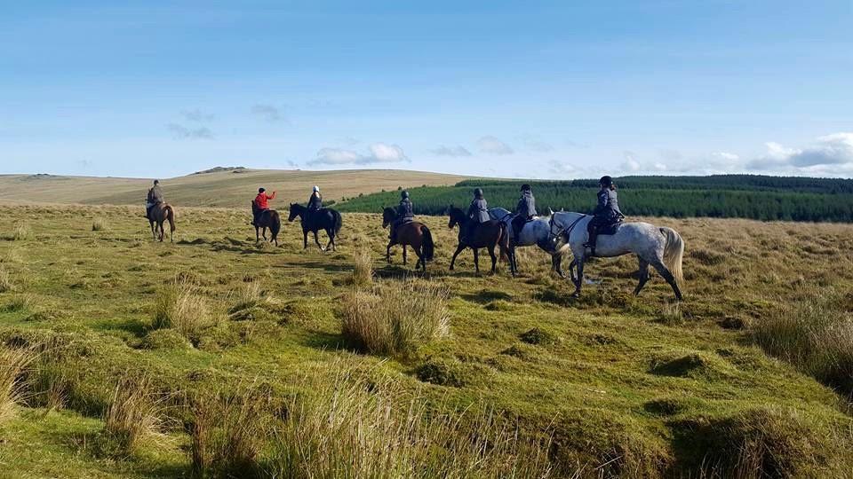 Theresa Sanders: Adventures Riding the Dartmoor Derby