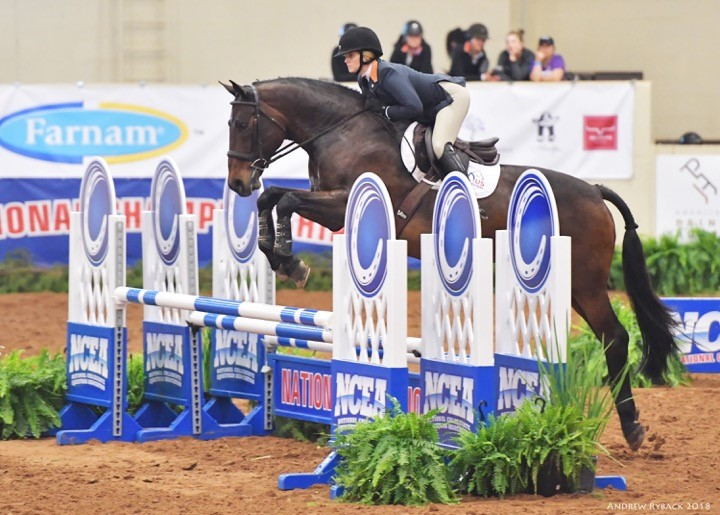 National Titles for Caitlin Boyle and Auburn University Equestrian