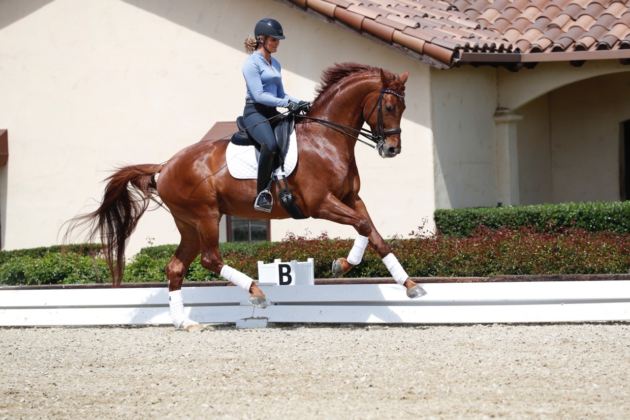 "Sarah Lockman -Dressage Rider's Journey From ""Pinch Me"